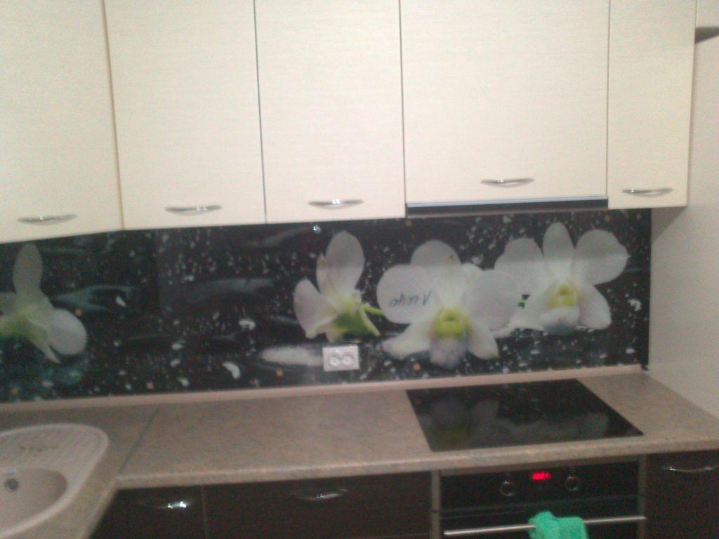 фотопечать на стекле, скинали, скинали из закаленного стекла, изображение для кухонного фартука, картинка для синали, фото для кухни, скинали для кухни, как выбрать скинали для кухни, самые красивые изображения для скинали, кухонный фартук как выбрать, фото для стекла в кухню, стеновая панель в кухню из стекла, лучше всего на кухню подойдет, панель из закаленного стекла, орхидеи, черный фон, орхидеи символ богатства, фартук с подсветкой