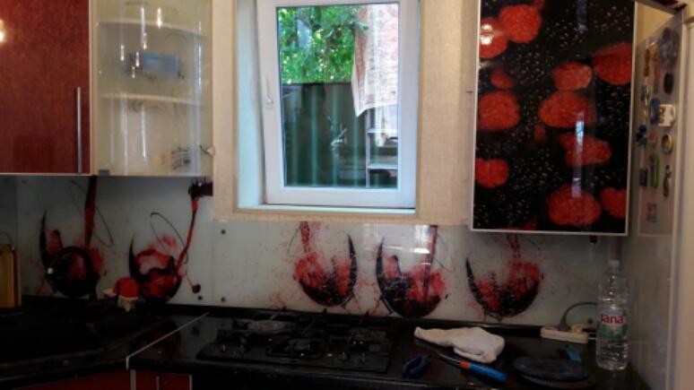 кухонные фартуки, кухоные фартуки, скинали, фотостекло, фотопечать на стекле, изображение для кухонного фартука, картинка для синали, фото для кухни, скинали для кухни, как выбрать скинали для кухни, самые красивые изображения для скинали, кухонный фартук как выбрать, фото для стекла в кухню, лед, вишни, изображение для скинали