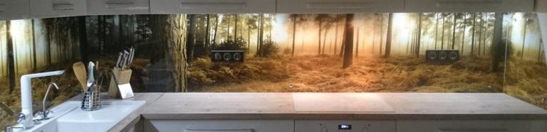 """Кухонный фартук изображение """"Утро в лесу"""""""