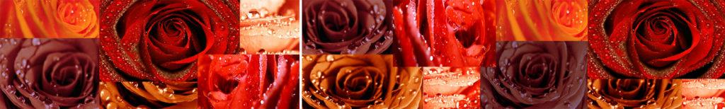 Изображение для кухонного фартука коллаж розы