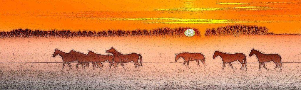 изображение для кухонного фартука лошади
