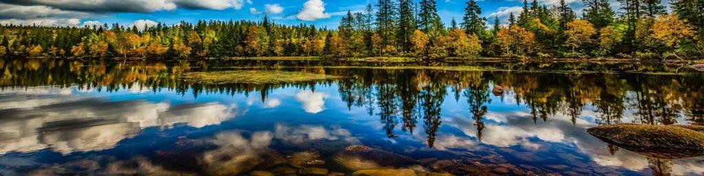 изображение для кухонного фартука озеро, небо, вода, лес, природа