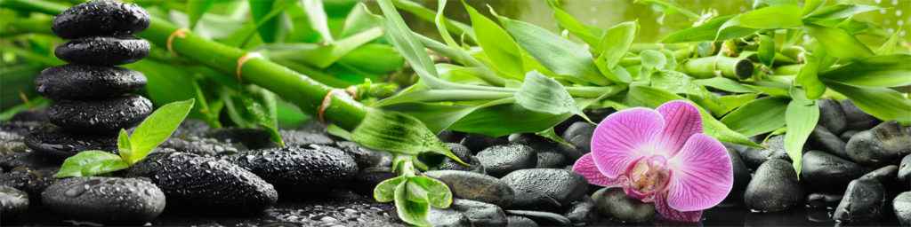 изображение для кухонного фартука орхидеи, камни, зелень
