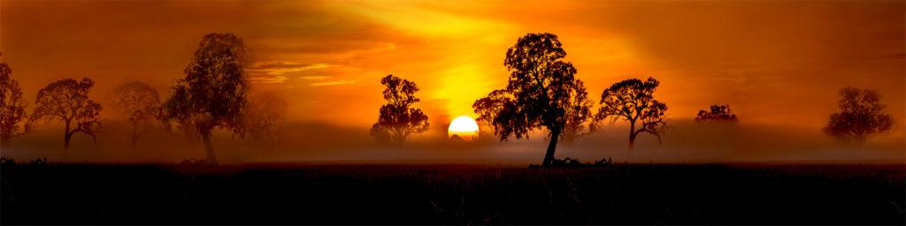 изображение для кухонных фартуков, лес, природа, рассвет, закат, красиво, пейзаж
