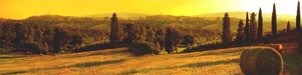 изображение для кухонных фартуков, лес, природа, рассвет, закат, красиво, пейзаж, стог сена