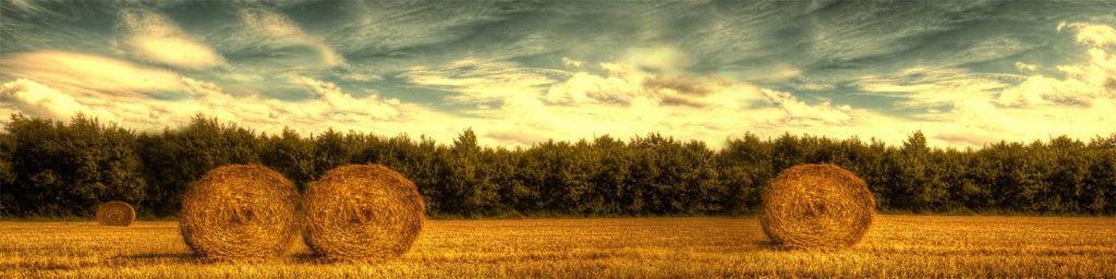 изображение для кухонных фартуков, лес, природа, рассвет, закат, красиво, пейзаж, стог, сена, поле