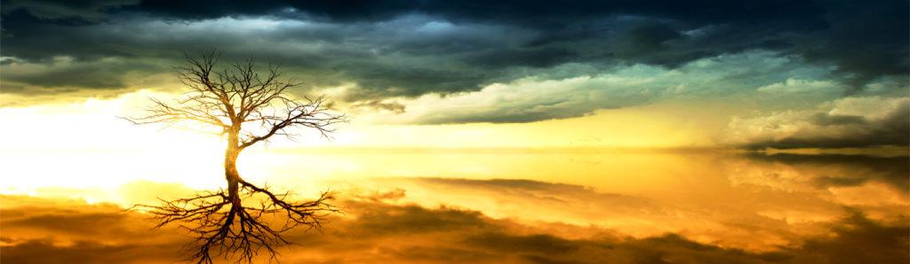 изображения для кухонных фартуков небо, солнце, облака, рассвет