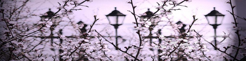 изображение для стеновой панели из стекла, скинали из закаленного стекла, кухонный фартук с фотопечатью, самые модные изображения для фотопечати